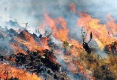 Avión y helicópteros llegan a Cusco para incendio forestal incontrolable (VIDEOS)