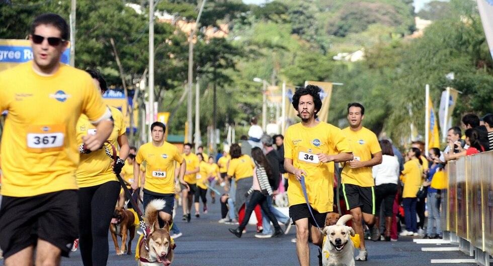 Maratón, atención médica y adopción de animales abandonados mañana en Lince y Ventanilla