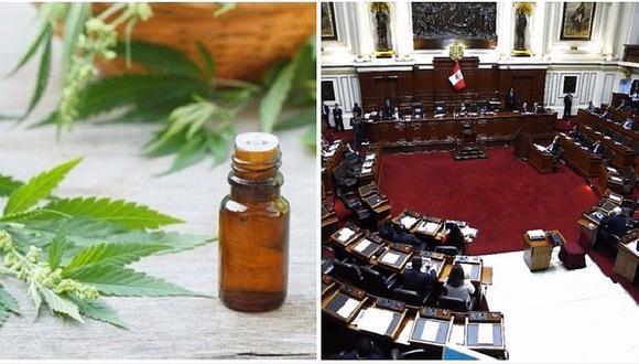 Histórico: Congreso aprueba el uso del cannabis medicinal en el Perú (VIDEO)