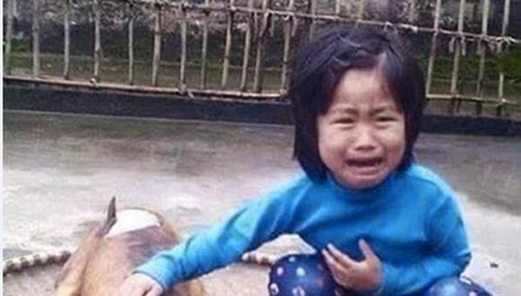 """De terror, niña encuentra a su perro """"Flower"""" cocinado en un restaurante"""