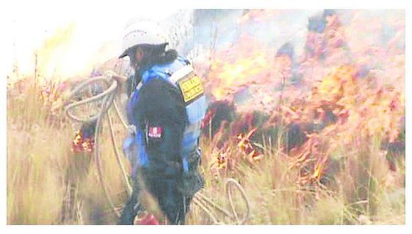 13 incendios forestales van en el 2017