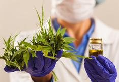 Gobierno promulgó ley que regula el uso medicinal y terapéutico del cannabis