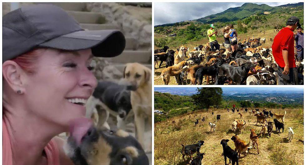 Lya Battle, la mujer conocida como la guardiana de los 700 perros (VIDEO)