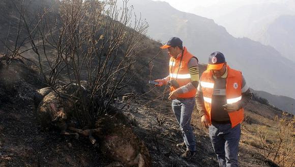Extinguen incendios forestales en Puno, Apurímac, Cusco y Amazonas