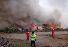 Incendio forestal consume 35 hectáreas de pastizales en Nepeña, Áncash