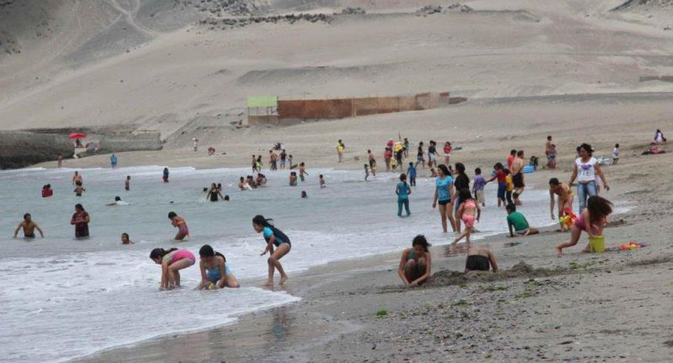 Mascotas están prohibidas en playas y piscinas públicas