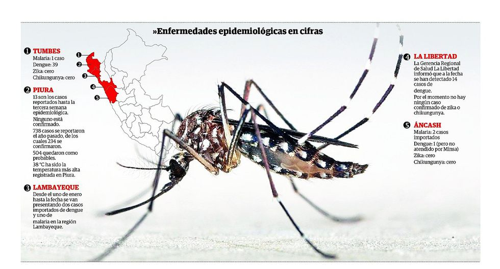 Detectan casos de dengue y malaria en el norte del país