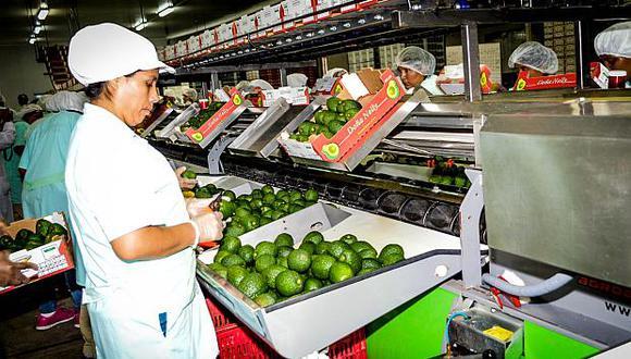 Lima concentró el mayor número de exportadoras, seguida por Piura y Callao. (Foto: ADEX)