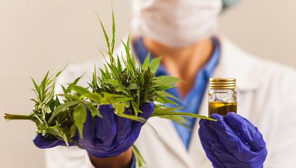 Gobierno promulgó ley que regula el uso medicinal y terapéutico del cannabis.