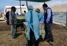 COVID-19: Realizan pruebas rápidas a pescadores de Pisco
