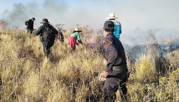 Reportan 62 incendios forestales en provincias de Arequipa