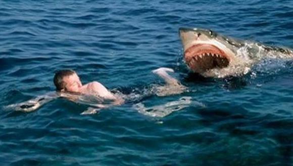 EEUU: Hombre herido en nuevo ataque de tiburón
