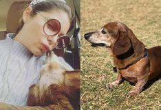 Itatí Cantoral se despidió de su perrito fallecido con triste mensaje