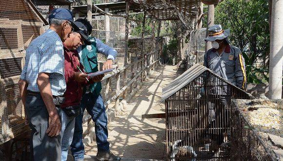 Tacna: Declaran en cuarentena a animales de zoológico municipal