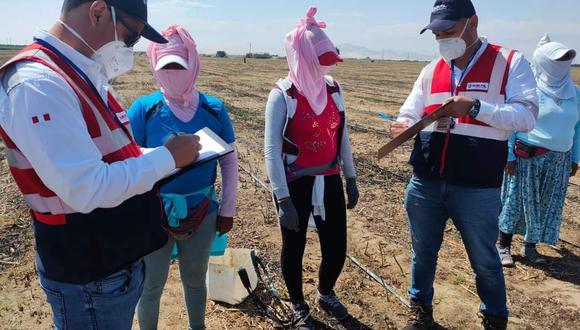 Fiscalizadores de Perú Formal Rural evidenciaron las faltas