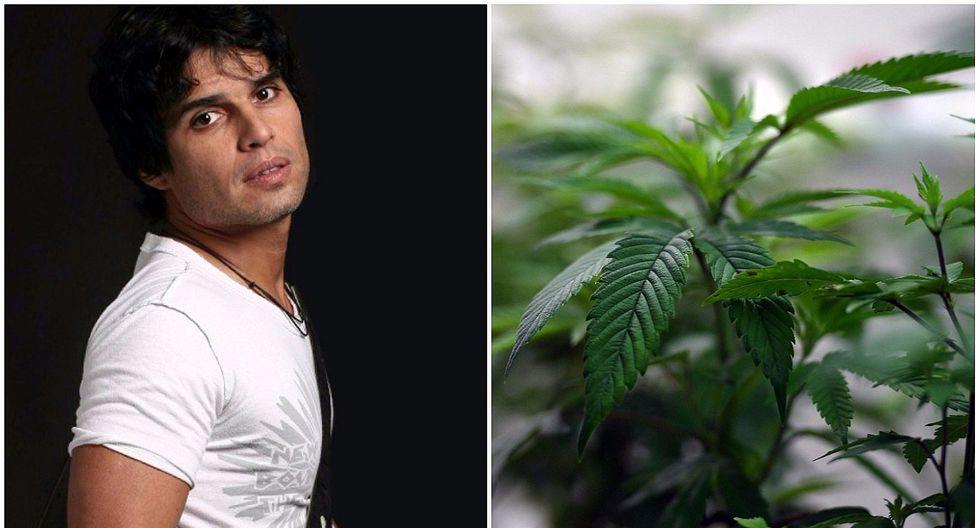 Pedro Suárez Vértiz pide legalizar el aceite de marihuana