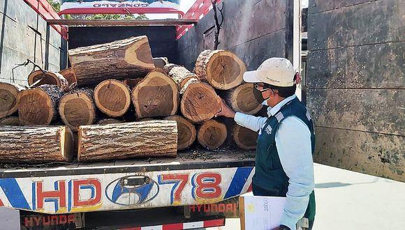 Piura: SERFOR decomisa madera talada ilegalmente en bosque seco fronterizo con Ecuador