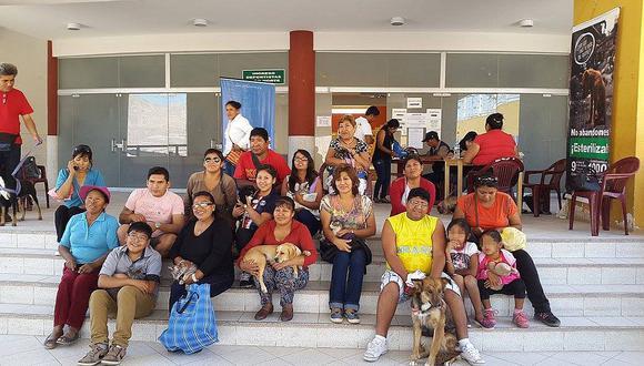 Esterilizarán a perritos para evitar sobre población de canes callejeros