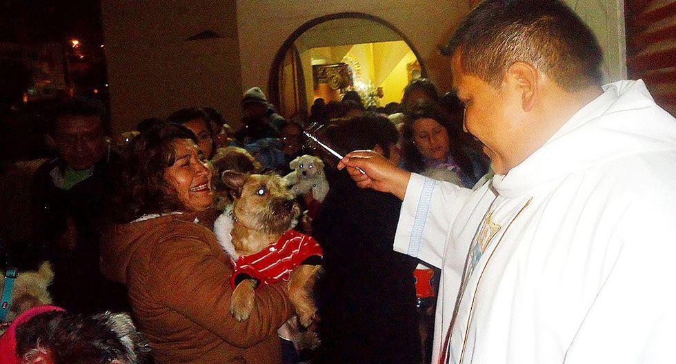 Moquegua: Mascotas de Ilo serán bendecidas en parroquias