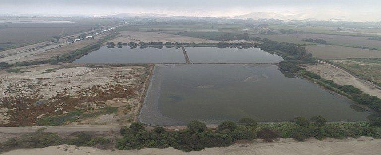 el-52-de-aguas-residuales-de-ptar-cachiche-sera-para-los-agricultores