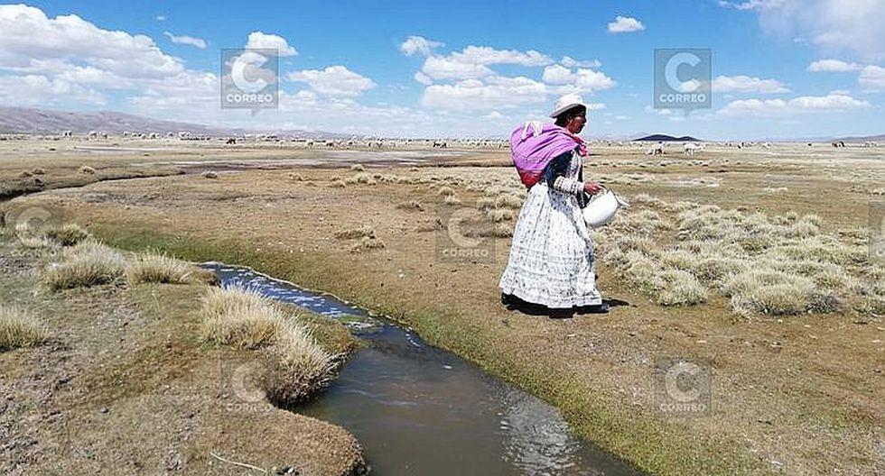 Comuneros retribuyen al agua con la conservación de bofedales (FOTOS)