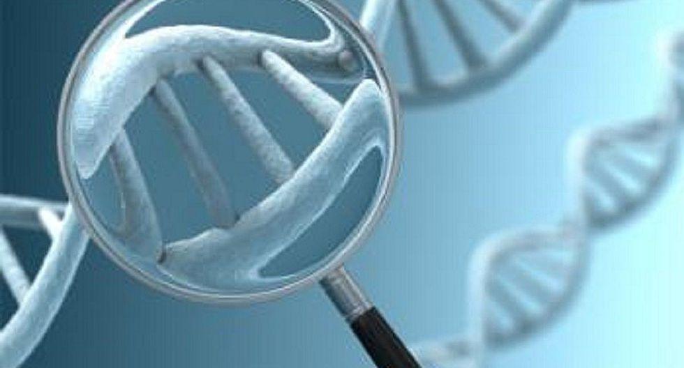 Cáncer: La mayoría de mutaciones que causan este mal se deben al azar
