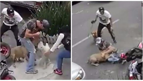 Facebook: joven enfrentó a Pitbull para ayudar a su mascota durante ataque (VIDEO)