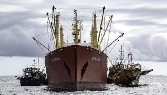 Muchas embarcaciones chinas. Foto referencial: Simon Ager / Sea Shepherd.