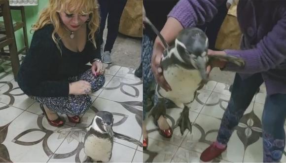 Viral: Susy Díaz posa junto a un animal en cautiverio (VIDEO)