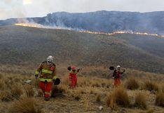 Bomberos luchan por horas para apagar incendio forestal en la provincia de Junín (VIDEO)
