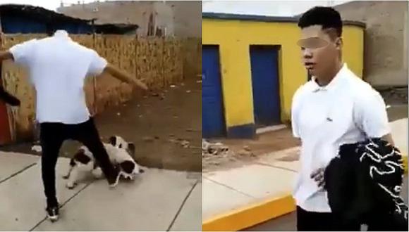 Maltrato animal: joven patea y lanza por los aires a un cachorro en Huacho (VIDEO)