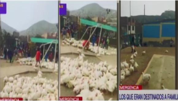 Carabayllo: saquean pollos que eran destinados para familias vulnerables