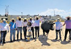 Toros y tradición en el distrito de Socabaya
