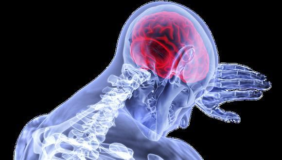 Cerebro cumple un papel muy importante en nuestras vidas, es la máquina que nos hace sentir, trabajar, esforzarnos, razonar, tocar, etc. (Foto: Pixabay)