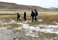 Heladas: Declaran en emergencia a 25 distritos de Arequipa
