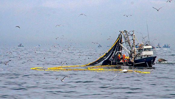 La pesca industrial generará divisas para el país que va a permitir hacer frente a las demandas que se necesitan en el sector salud por el COVID-19, dijo la presidenta de la SNI. (Foto: GEC)