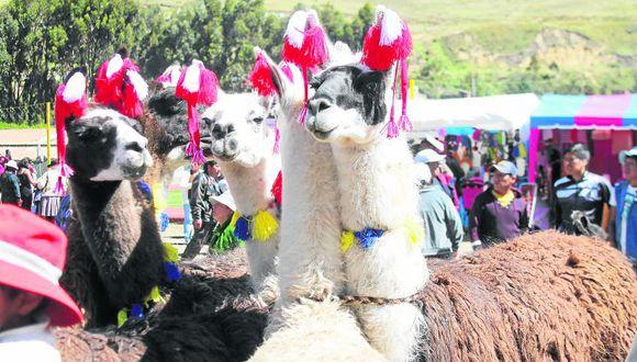 Distrito Ascensión celebra 15 años de aniversario