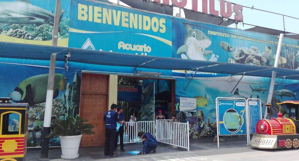 Acuario Nautilus es visitado por miles de personas cada semana. (Foto: Difusión)