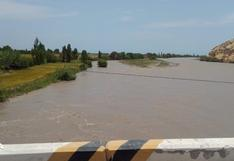 Incremento del caudal del río Majes pone en riesgo cultivos