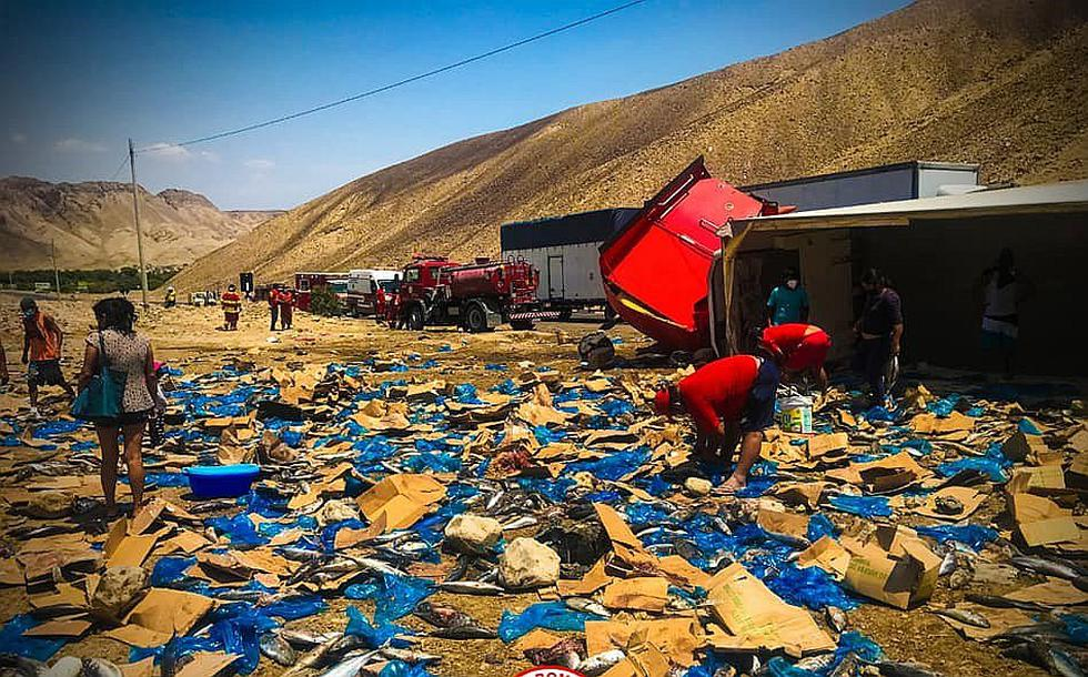 Camión cargado de pescado sufre despiste en Nasca