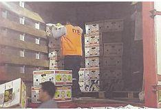 Tumbes: Incautan más de 8 mil kilos de pitahaya en Carpitas