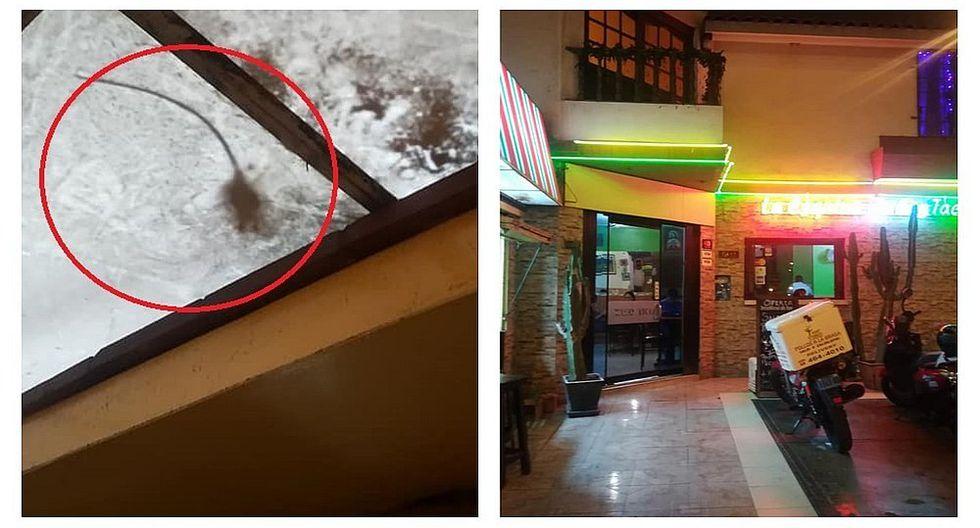 Facebook: joven graba a roedor en restaurante de San Miguel (VIDEO)