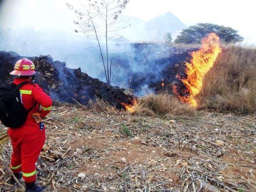 700-hectareas-de-terreno-resultaron-afectadas-por-incendio-forestal-en-cajamarca