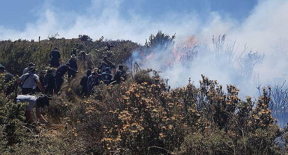 Incendio llegó al Bosque de los Queñuales en el volcán Pichu Pichu (FOTOS)
