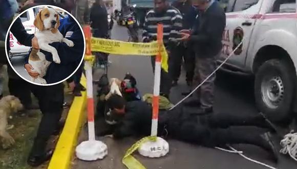 Policía Nacional rescató a perrito que cayó a buzón de alcantarillado en el Callao (VIDEO)