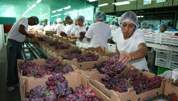 Ica fue la región más importante al representar el 45% de las exportaciones totales el año pasado. (Foto: GEC)