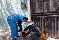 18,426 canes fueron vacunados contra la rabia en la región Arequipa