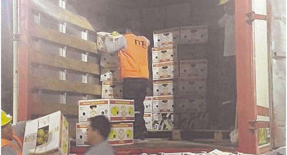 Incautan 10,000 kilos de pitahaya de contrabando
