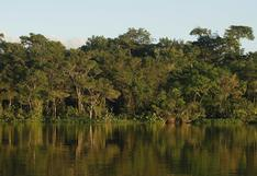 Implementarán ruta de turismo nocturno y amazónico en Cusco