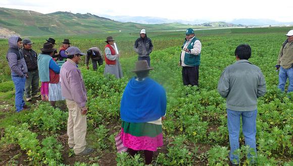 Países de América Latina y Europa se reunirán en Cusco para impulsar agricultura orgánica